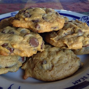 Tuesday Cook Off ~ Pumpkin Chocolate Chip Cookies
